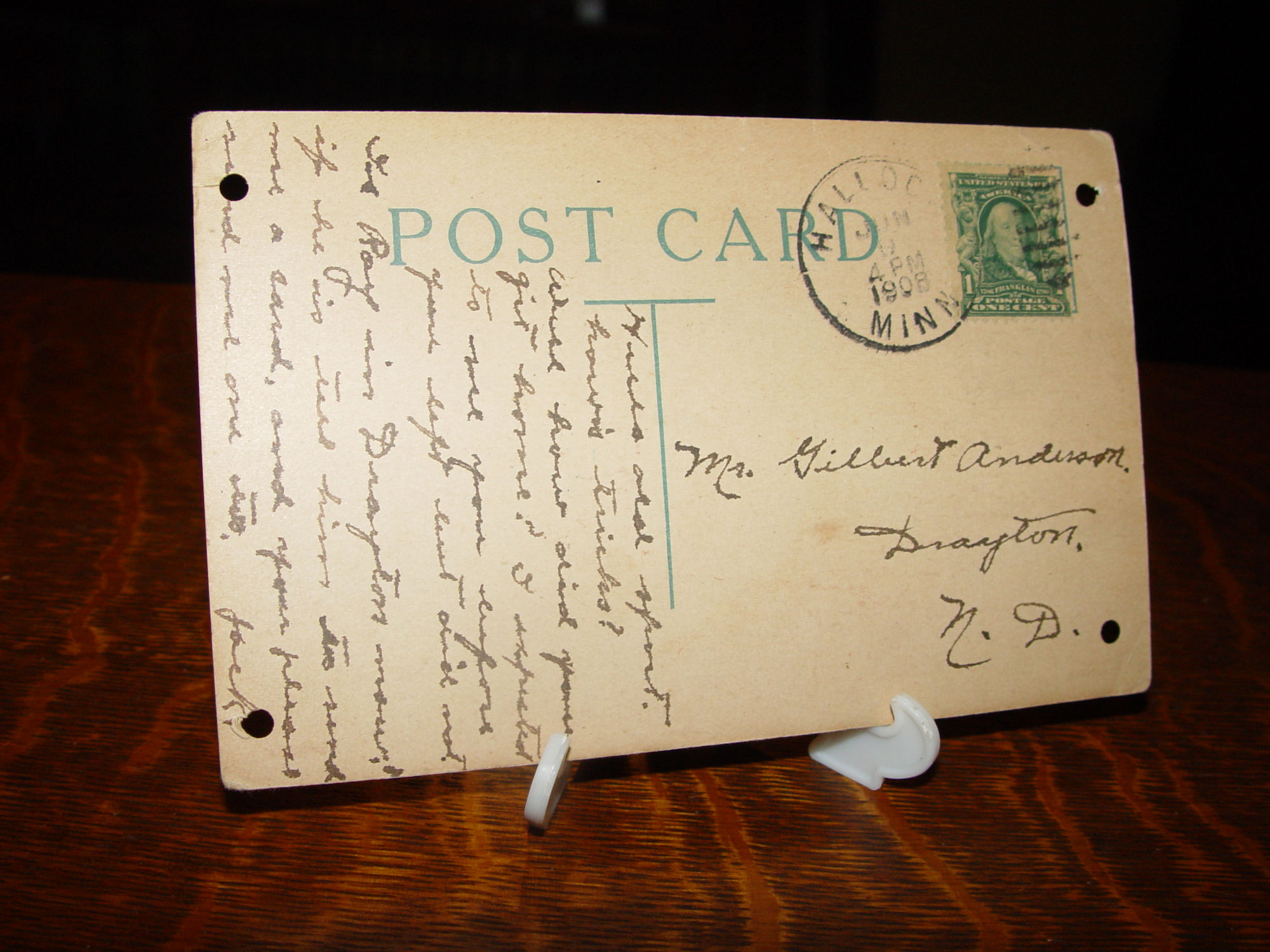 Chintz Bone China Cup &                                         Saucer ~ Royal Chelsea .....                                         Full of Garden Flowers